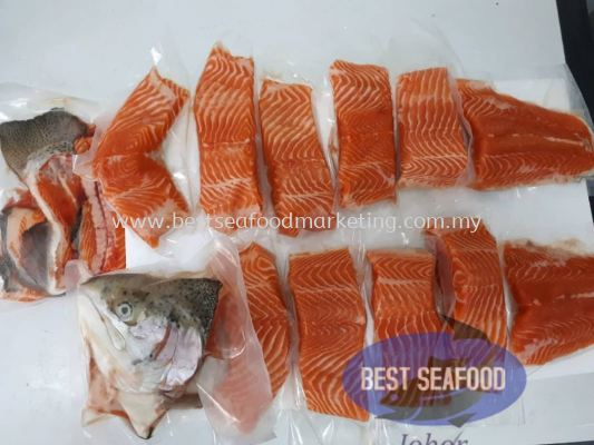 Salmon Trout / ���� / Ikan Trout (sold per nos)