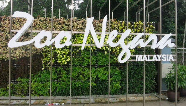 Minister: Zoo Negara has 'more than enough' funds, should spend prudently
