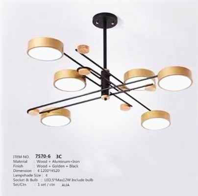 7570-6 Pendant Light