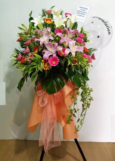 Lily Daisy Grand Opening CA230 floristkl