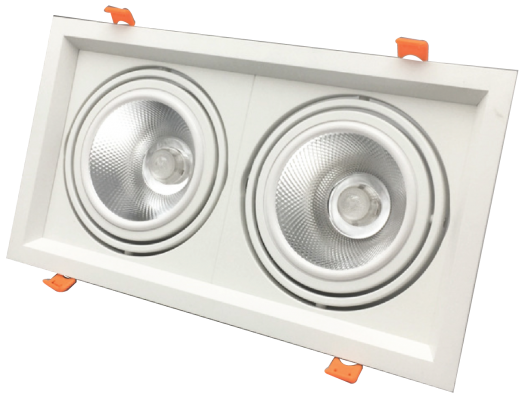 Led Adjustable Downlight 2x12w
