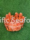 King Crab 600-800gram Seafood