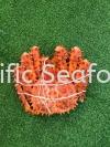 King Crab  Seafood