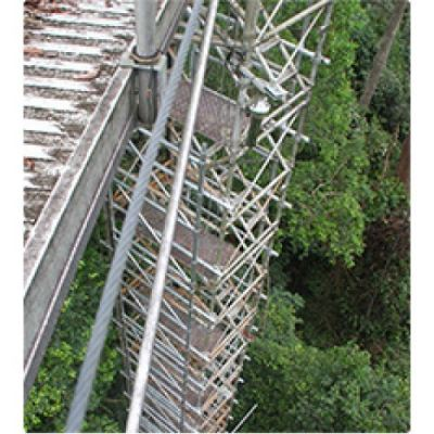 Forest Tower System 2 �C Scaffold