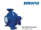 EISO End Suction Pump Euroflo Pump