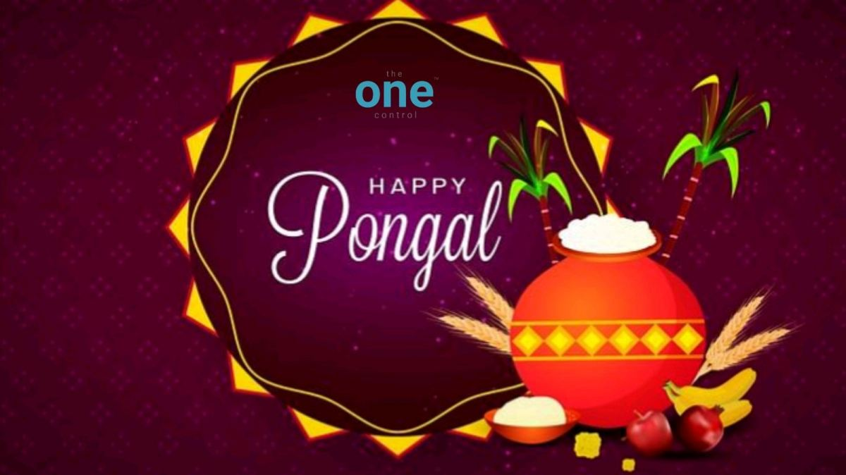 Pongal meaning ?