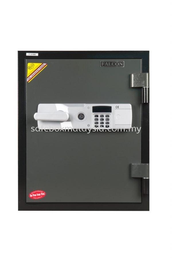Solid Safe F-V100C/ F-V100E