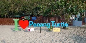 I Love Penang Turtle