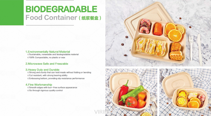 Biodegradeable Food Container