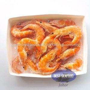 Cooked White Prawn / 白熟虾 / Udang Masak (Size 21-25)(sold per pack)