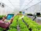 Plantation Soil Content Monitoring & Aggregation Automation Cloud IOT Monitoring & Control by AICE
