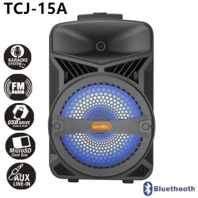 A/D/S 15inch Portable Speaker TCJ-15A
