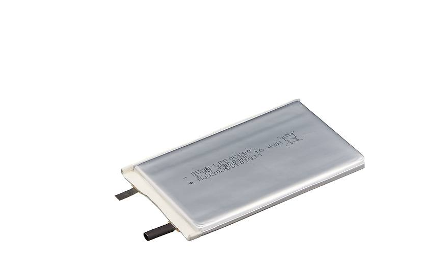 EEMB LP505590 Li-ion Polymer Battery