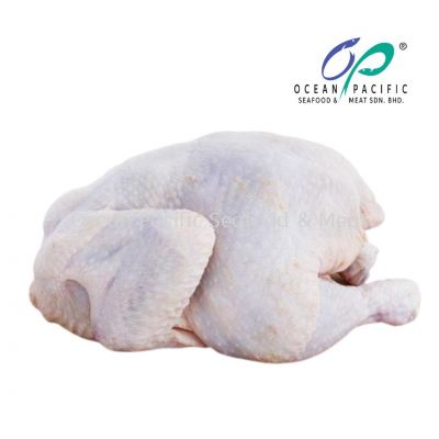 Whole Chicken (1.8KG per nos)