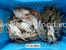 Ketam Bunga Fresh Crab