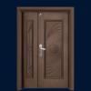 PP4-8810 Euro Board Security Door