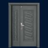 PP4-8806 Euro Board Security Door