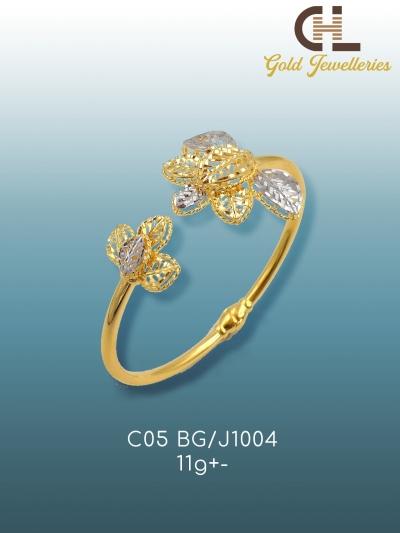 C05 BG_J1004