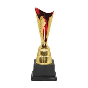 Economy Trophy 19294