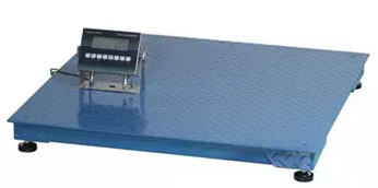 Explosion Proof Electronic Floor Scale