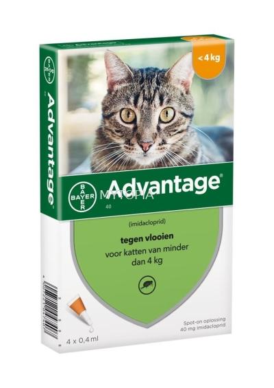 AVANTAGE CAT <4KG