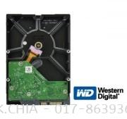 WESTERN DIGITAL SATA 4.0