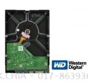 WESTERN DIGITAL SATA 2.0