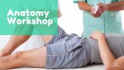 Anatomy Workshop Workshop Massage Courses