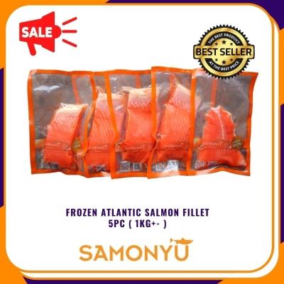 Frozen Atlantic Salmon 5pc /set