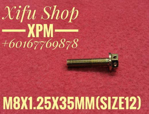 STAINLESS STEEL GOLD COLOR BOLT M8X1.25X35MM SIZE12