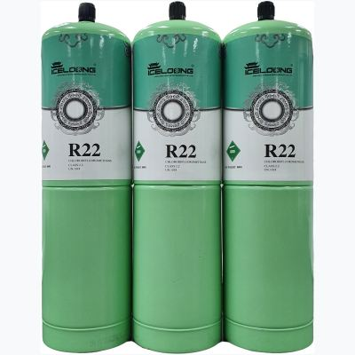ICE LOONG R22 (800g)