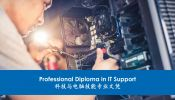 Professional Diploma in IT Support (Online Learning) Fully Online Learning (100%) Online Learning