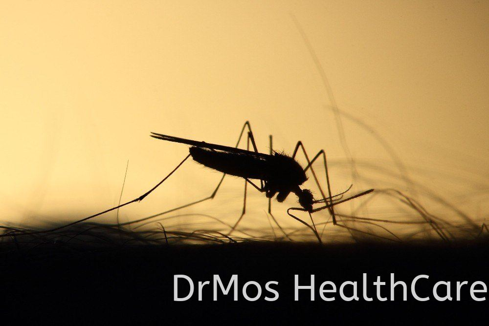X'Mos listed in 10 Best Mosquito Repellents in Malaysia | Best of Health 2021