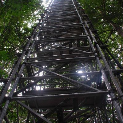 Forest Tower System 3 �C Scaffold
