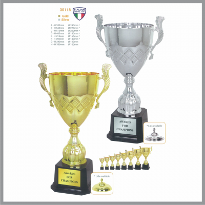 TROPHY 30118 Gold / Silver