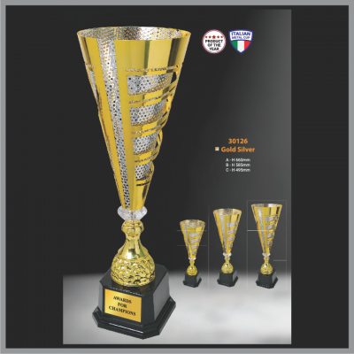 TROPHY 30126 Gold Silver