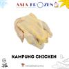 Kampung Chicken 【1.6-1.8kg +-】 FRESH CHICKEN
