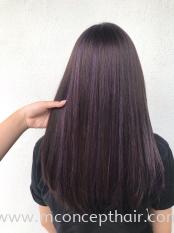 Mystery Ash Purple Highlights