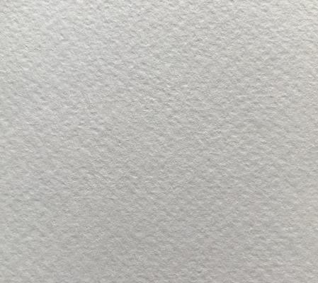 Modigliani Candido White