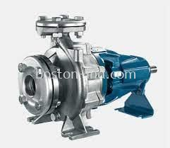 Bostt Stainless Steel End Suction Pump