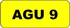 AGU9  VVIP Plate