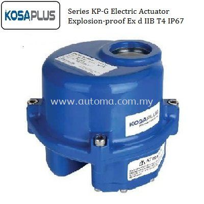 Electric Actuator Explosion~proof
