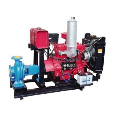 Diesel Engine Water Pump for Durian Farm