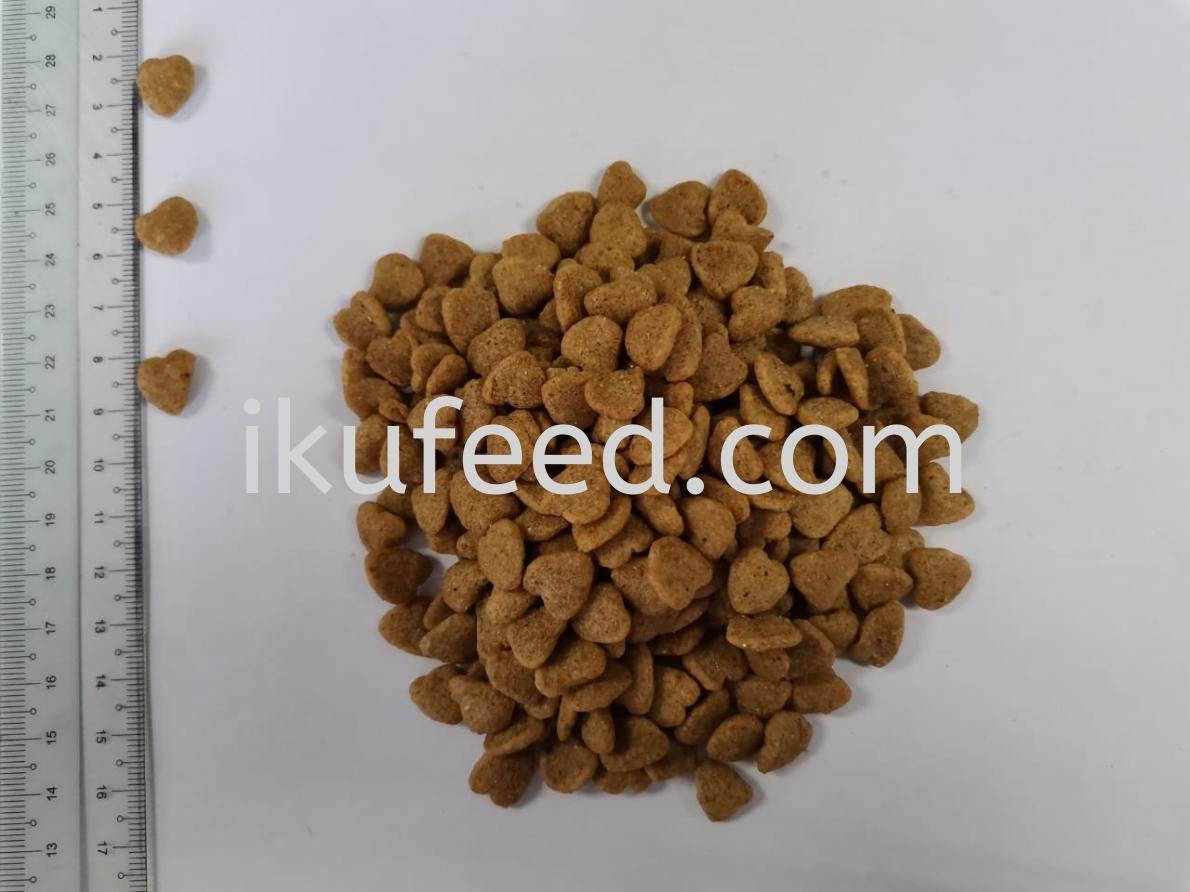 20KG DRY CAT FOOD - LOVE