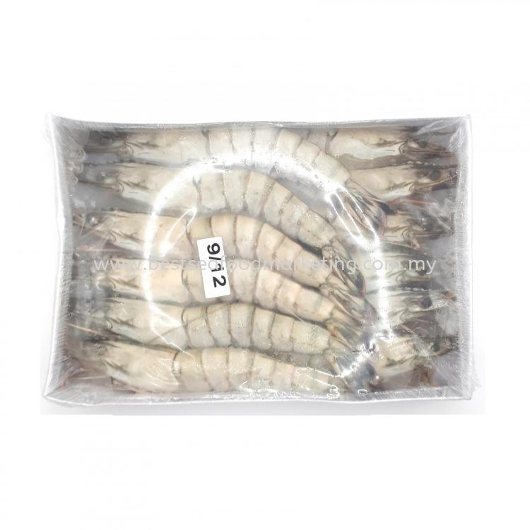 Tiger Prawn / 老虎虾 / Udang Harimau (Size 9-12)(sold per pack)