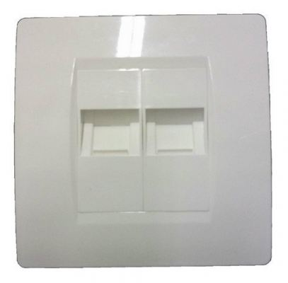 DCOM Face Plate 45 Degree Double Port
