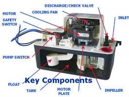554455    Little       GIANT    VCMA20ULS    Condensate    Drain    Pump