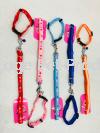 5099-5102 Collar & Leash Leash & Harness Dog Accessories