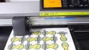 Graphtec CE6000-120 Electronic Cutting Plotter (With Stand) Graphtec CE6000 PLUS Series Plotter Machines