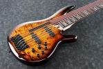 SRAS7 Bass Workshop SR Series Bass Ibanez